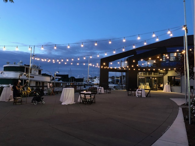 Evening Dockside Patio Lighting Against Blue Nighttime Sky